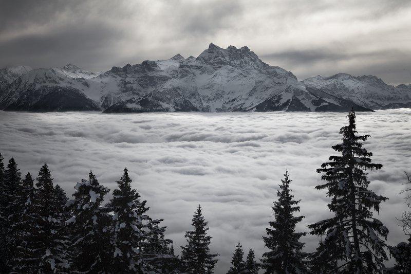 горы,снег, туман, облака, швейцария, солнце,воздух *Над облаками*photo preview