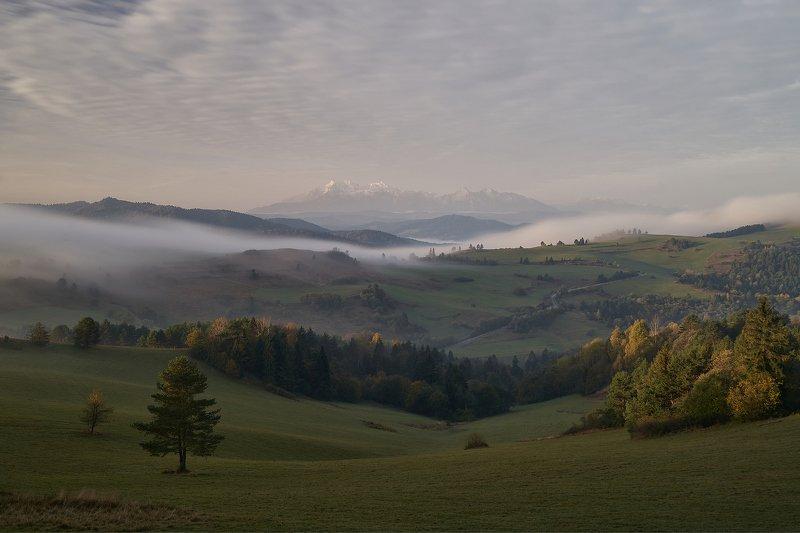 fog,morning,sunrise,mist,hill,hills,autum W7photo preview
