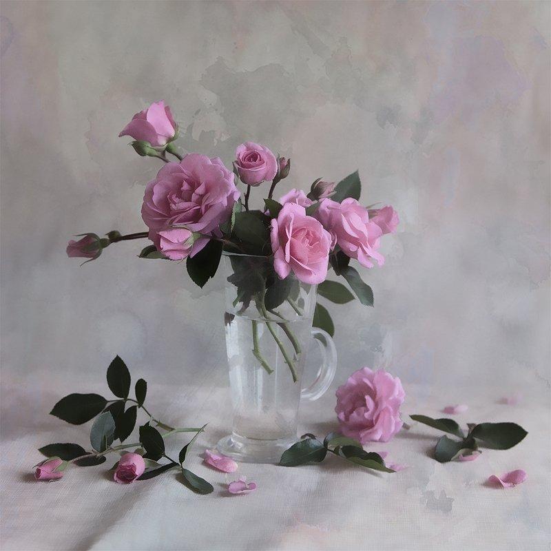 Розы Просто розыphoto preview