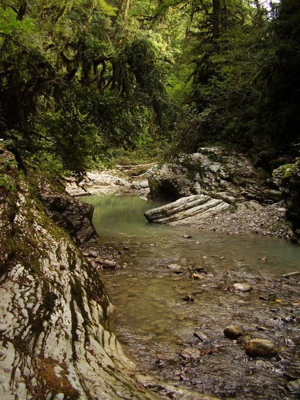 водопад, лес, сочи, каньон псахо Каньон Псахоphoto preview
