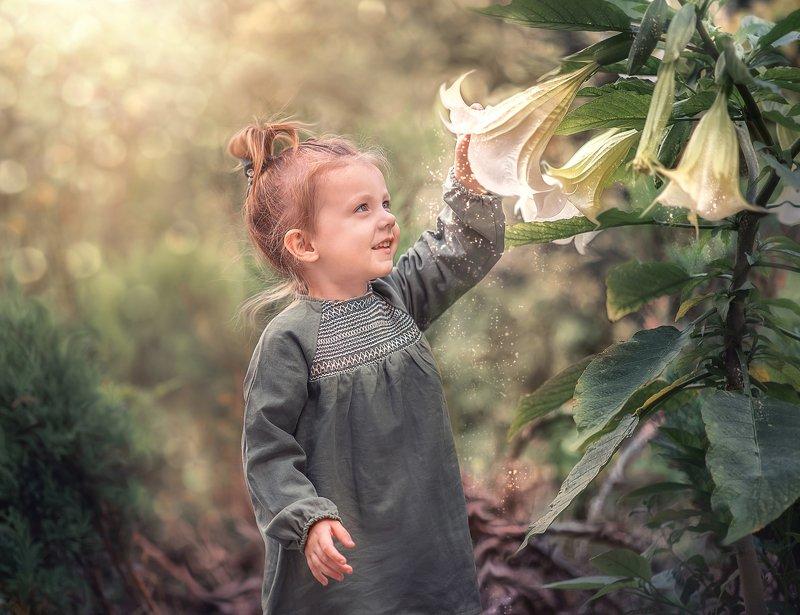Волшебная пыльцаphoto preview