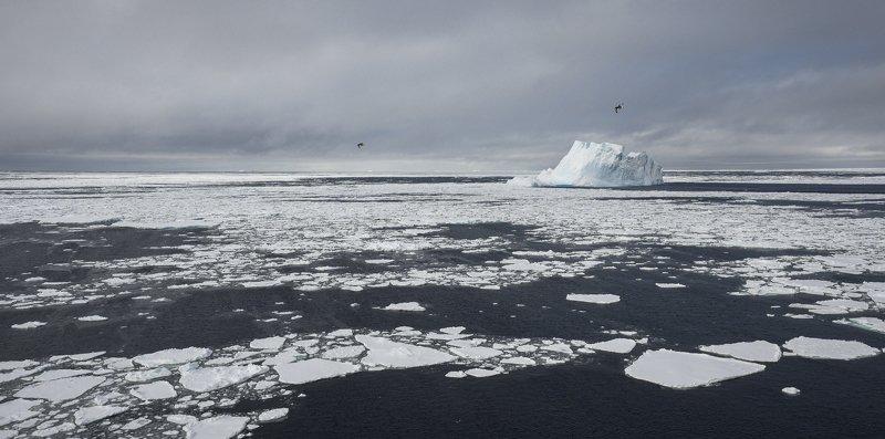 Во льдах Антарктикиphoto preview
