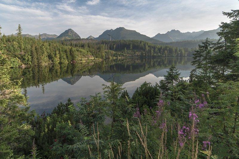 словакия, горы, татры, штребське плесо, озеро, деревья, пейзаж Штребське Плесоphoto preview