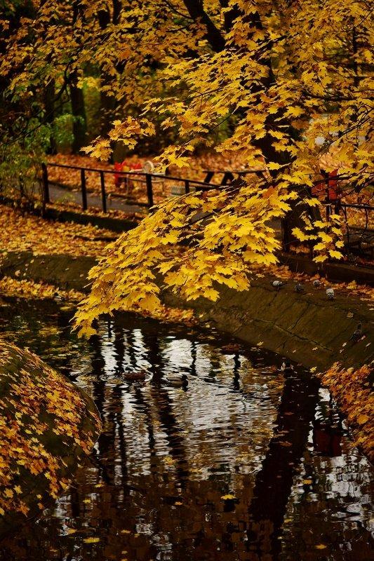 Осенний паркphoto preview
