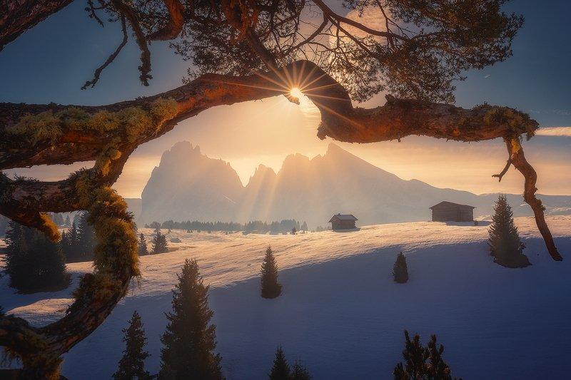 dolomiti, italy, landscape, winter, snow, alpe, di, siusi, mountain, sun,  alpe di siusiphoto preview