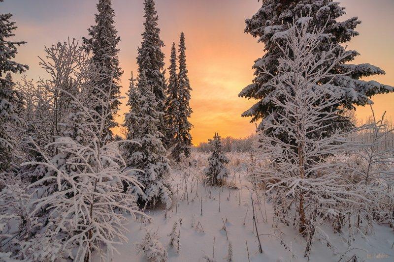 печора,коми,закат Зимние краски севераphoto preview