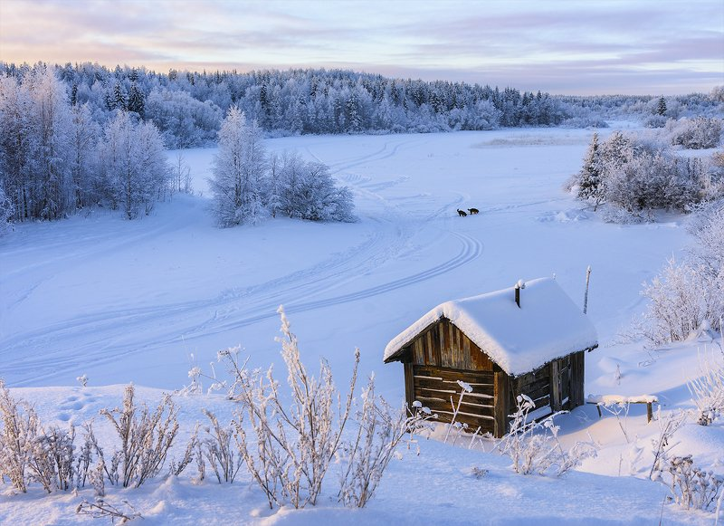 зима, снег, река, берег, банька, лес, деревья, иней, следы, собаки У замёрзшей рекиphoto preview
