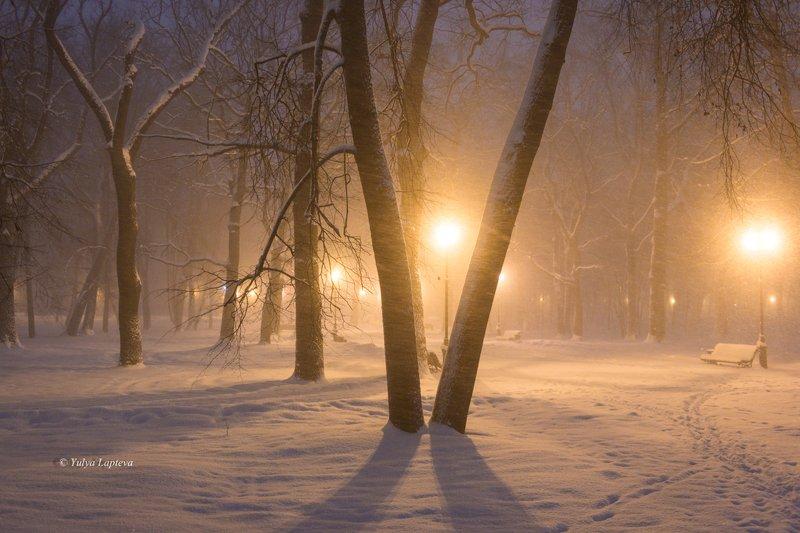 роосия,зима,январь,брянск,метель,туман,вечер \