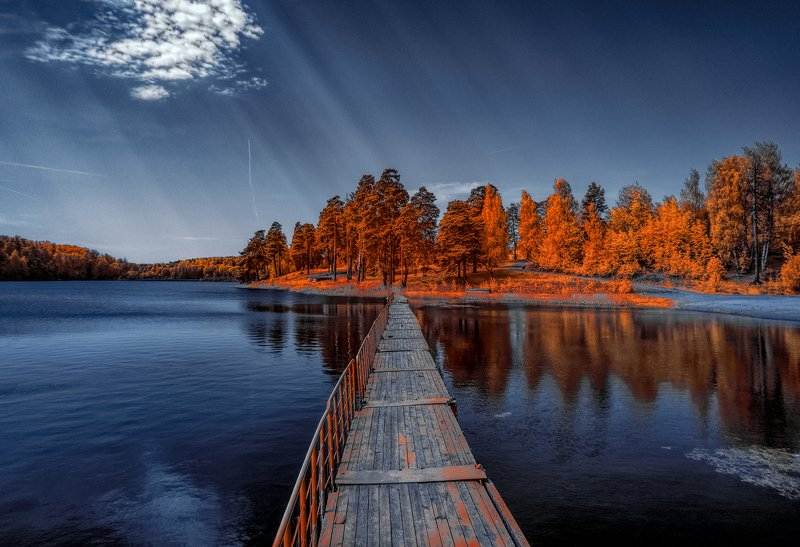infrared,ик-фото,инфракрасное фото, инфракрасная фотография, пейзаж, весна К теплу весны.photo preview
