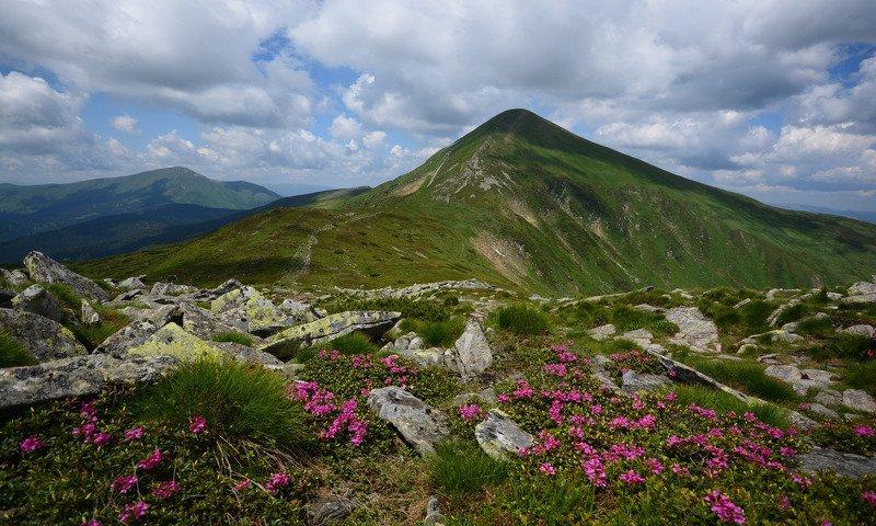 карпаты, говерла, carpathian, hoverla Говерлаphoto preview