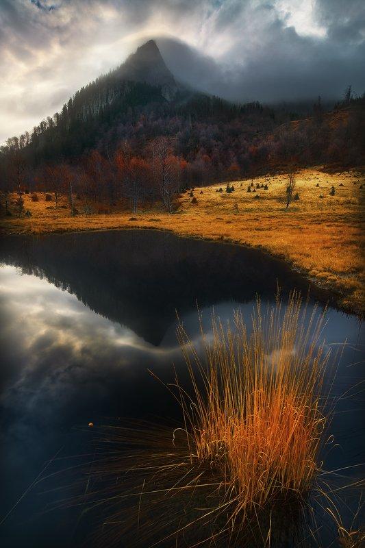 Autumn pondphoto preview