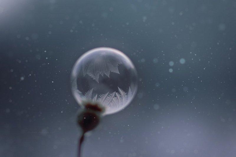 пузырьки*photo preview