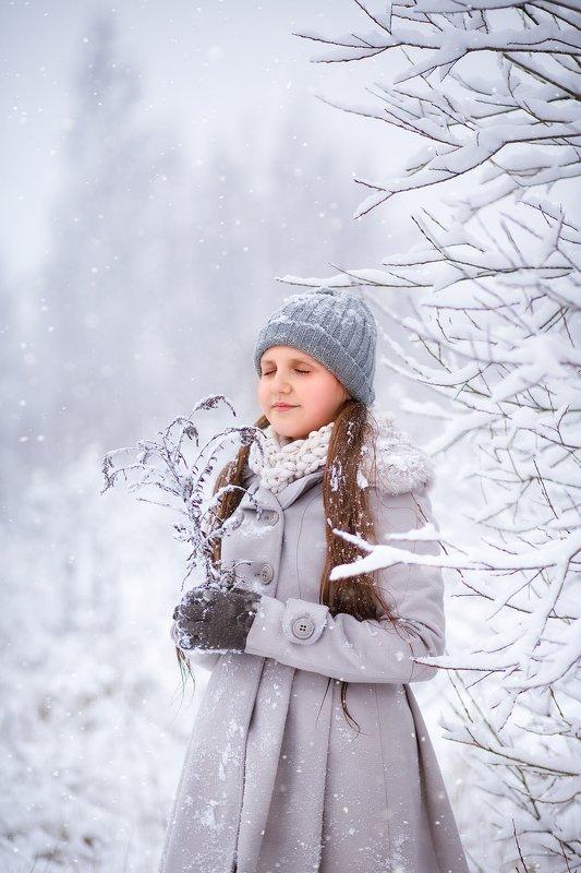 Зимняя мечтаphoto preview