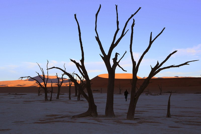 Вечер в пустынеphoto preview