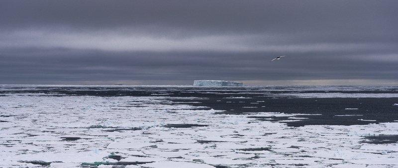 Пейзажи Антарктикиphoto preview