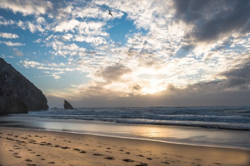 португалия, пляж, океан, следы, песок, атлантический океан, вода, закат На закатеphoto preview