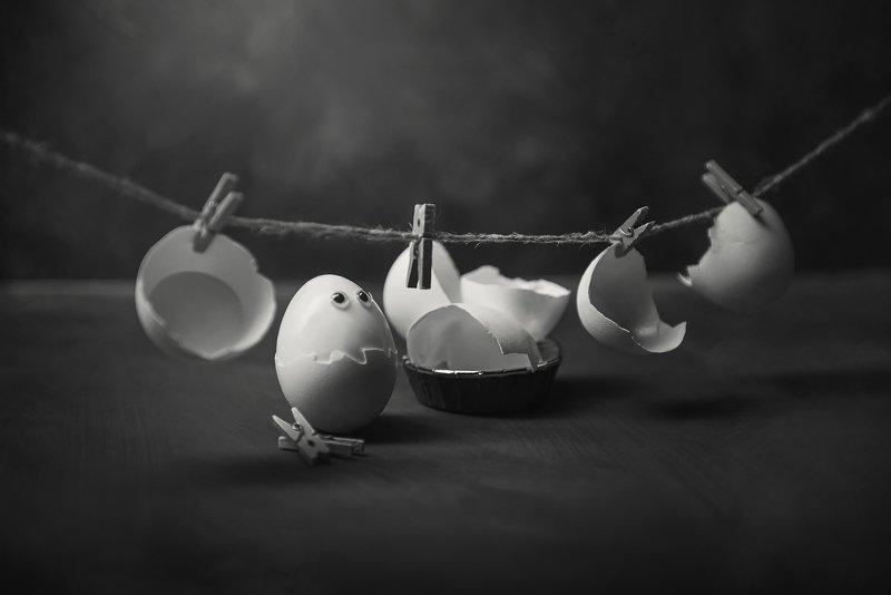 яйцо, eggs, стирка, чб, концепты, прачка Laundressphoto preview
