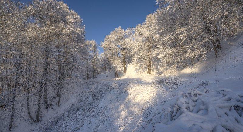 зима мороз солнечный день Январь.photo preview