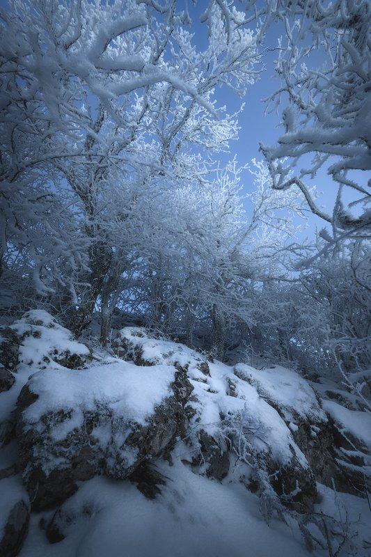 Крым зима мороз горы лес снег сказка Зима в Крымуphoto preview