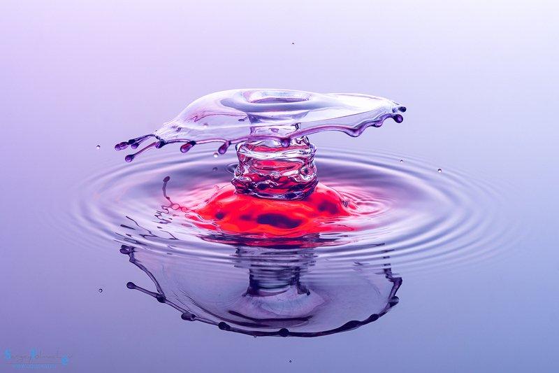 вода, капли, жидкость, макро, арт, liquid, liquidart, splash, drop, photo preview