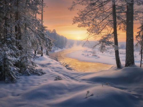 На солнечной излучине реки