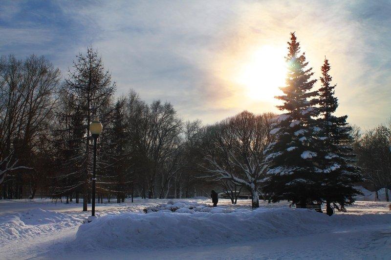 зима, теплый день, январь, парк *photo preview
