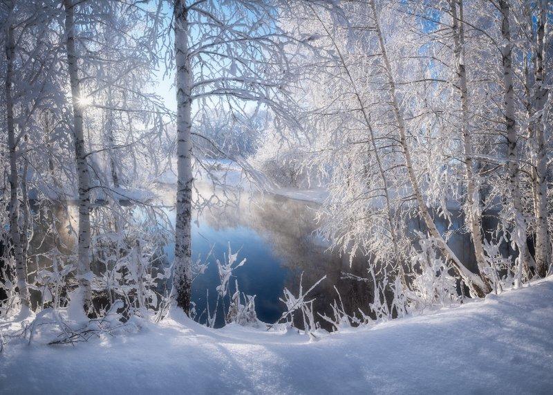 алтай, алтайский край, советский район, река кокша, лебединый заказник, березы в инее, иней, река, вода, зимний пейзаж, декабрь, мороз и солнце В белом кружевеphoto preview
