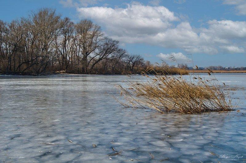 зима, мороз, холодно, лёд, каховка, небо, облака Холодно фото превью