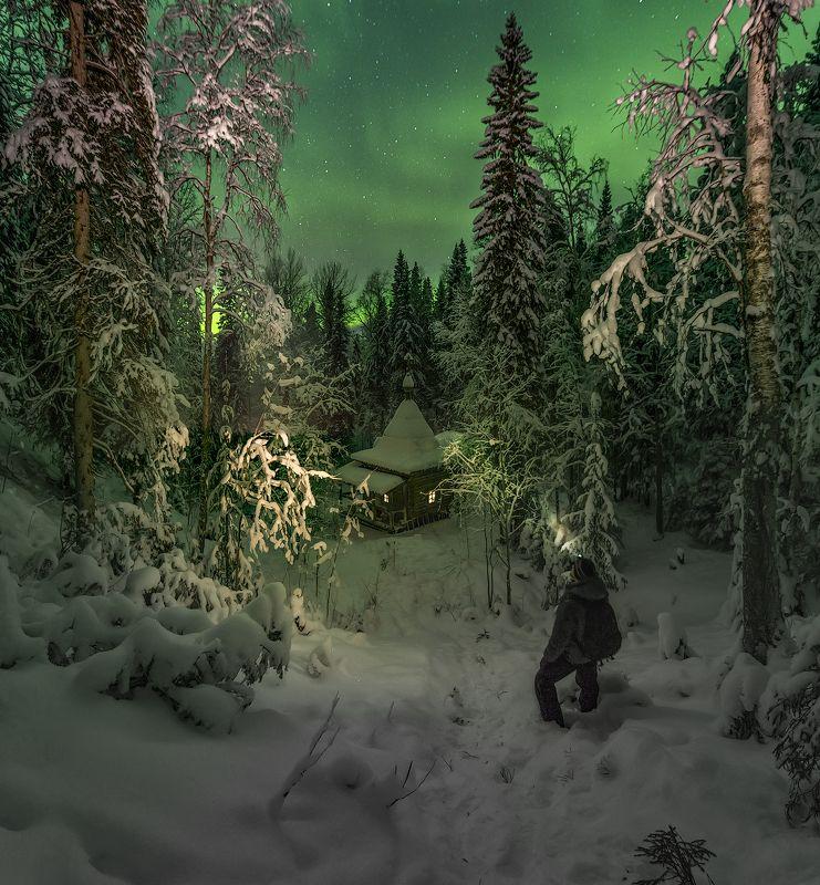 архангельская обасть, ночное фото, лес, русский север, северное сияние у Часовниphoto preview