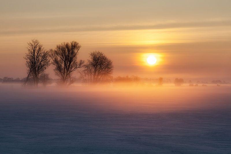 landscape Frosty morningphoto preview