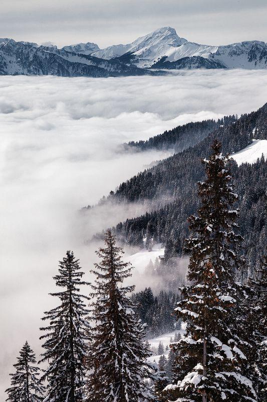 горы,облака, снег, деревья, волны, швейцария, туризм ***photo preview