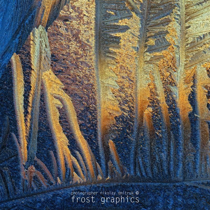 макро, мороз, дмитрук fg 3. 214 лёдсафариphoto preview
