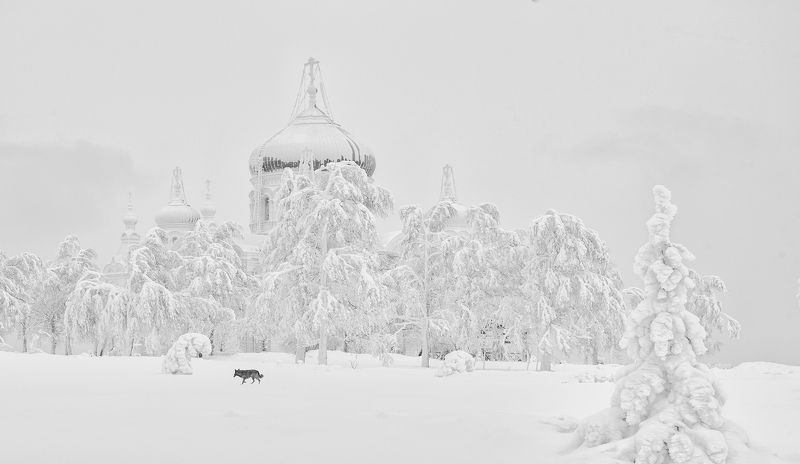 зима снег белогорский монастырь Зима в Белогорьеphoto preview