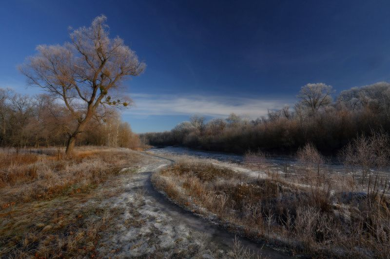 зима, мороз, иней, река, декабрь photo preview