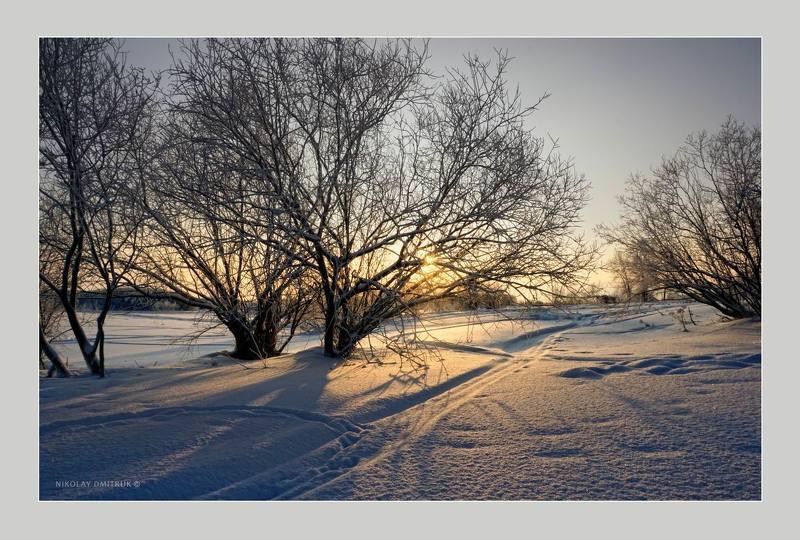 пейзаж зима мороз снег дмитрук музыка Холмогоры. январьphoto preview