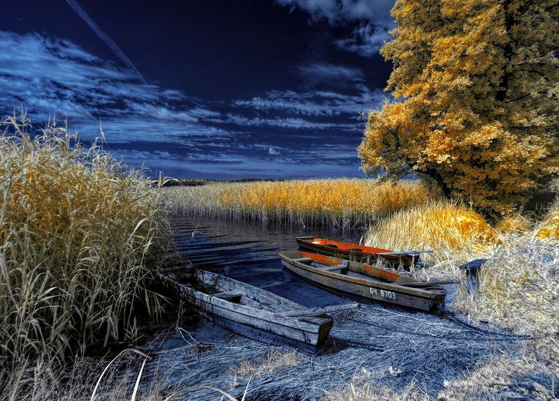 infrared,ик-фото,инфракрасное фото, инфракрасная фотография, пейзаж, лето В гостях у лета.photo preview