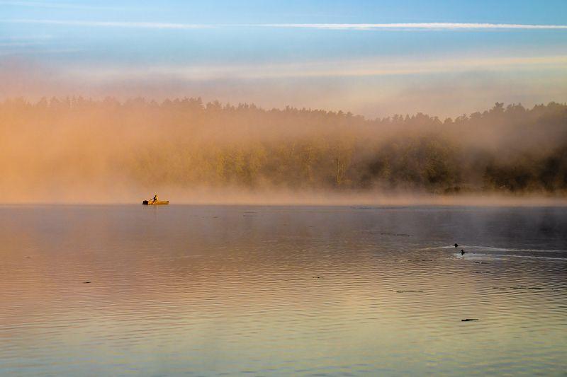 Poranna mgłaphoto preview