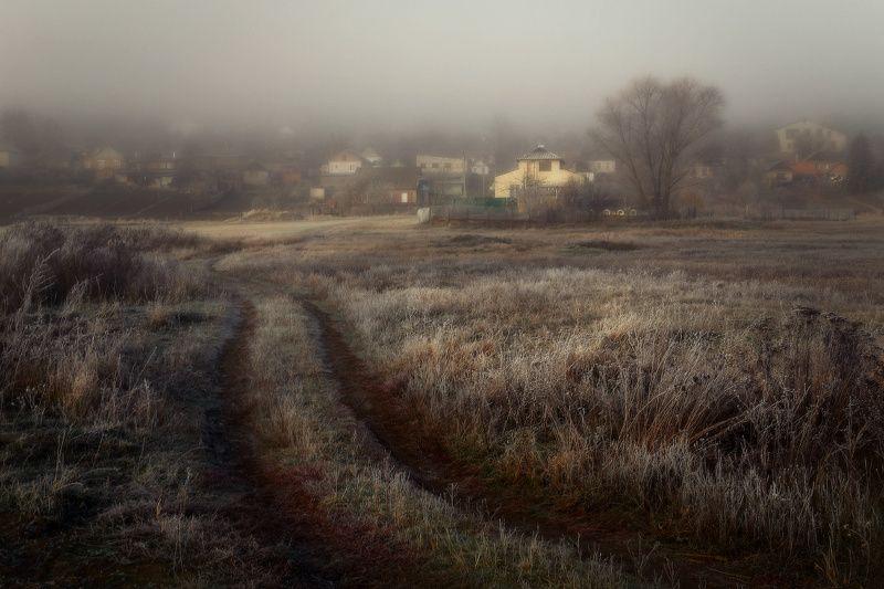 туман, утро, мороз, иней ***photo preview