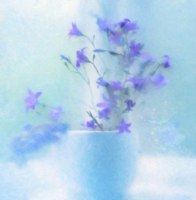 лютики-цветочкиphoto preview