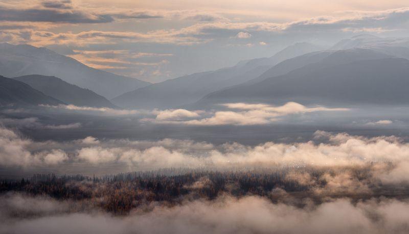 Утро в тумане фото превью