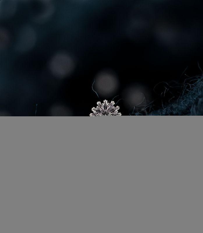 макро, природа, nature, macro, снег, зима, snowflake Редкая снежинка с 12-ю лучиками ❄️photo preview