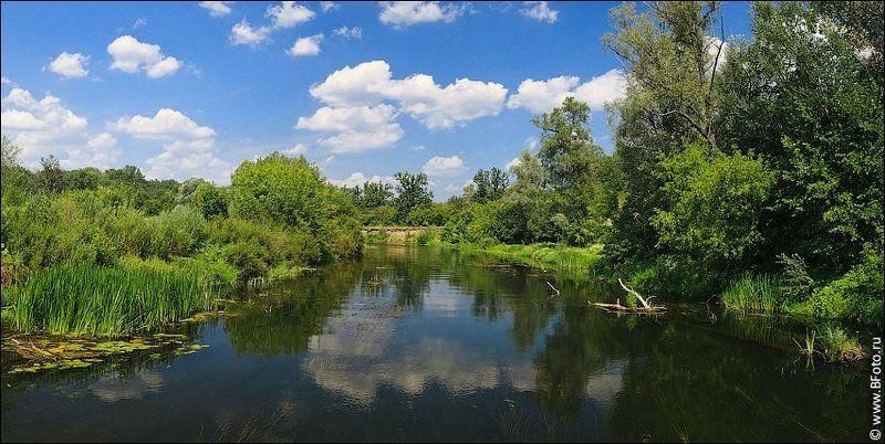 Истоки реки Воронежphoto preview