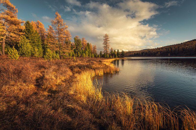 Озеро Киделю. Алтайphoto preview
