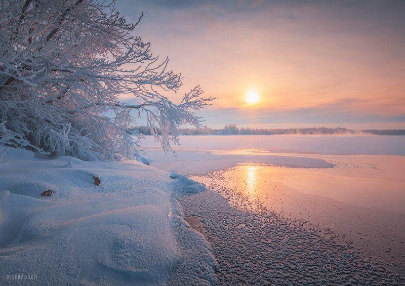 мороз, озеро, иней, рассвет, шатура Морозная негаphoto preview