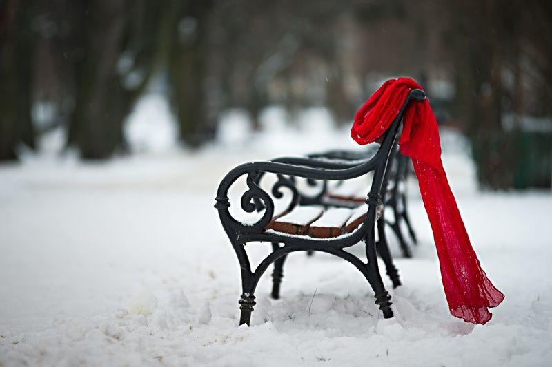 zimowa martwa natura z szalemphoto preview