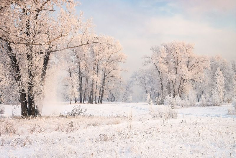 ...Зимнее настроение...photo preview