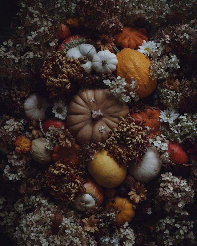 осень, флетлей, цветы, тыквы Осенние зарисовкиphoto preview