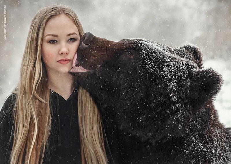 Bear Kissphoto preview