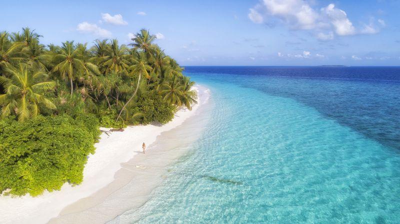 maldives, island, мальдивы Five colors of Maldivesphoto preview