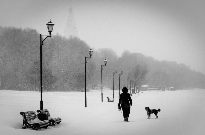 На прогулке в Коломенскомphoto preview